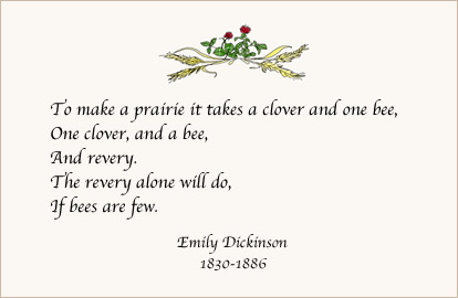 Emily Dickinson Quote